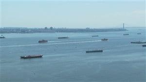 La traffic maritime peut perturber les aires d'alimentation des baleines.