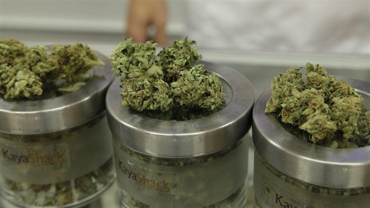 De la marijuana thérapeutique en vente dans un magasin de l'Oregon