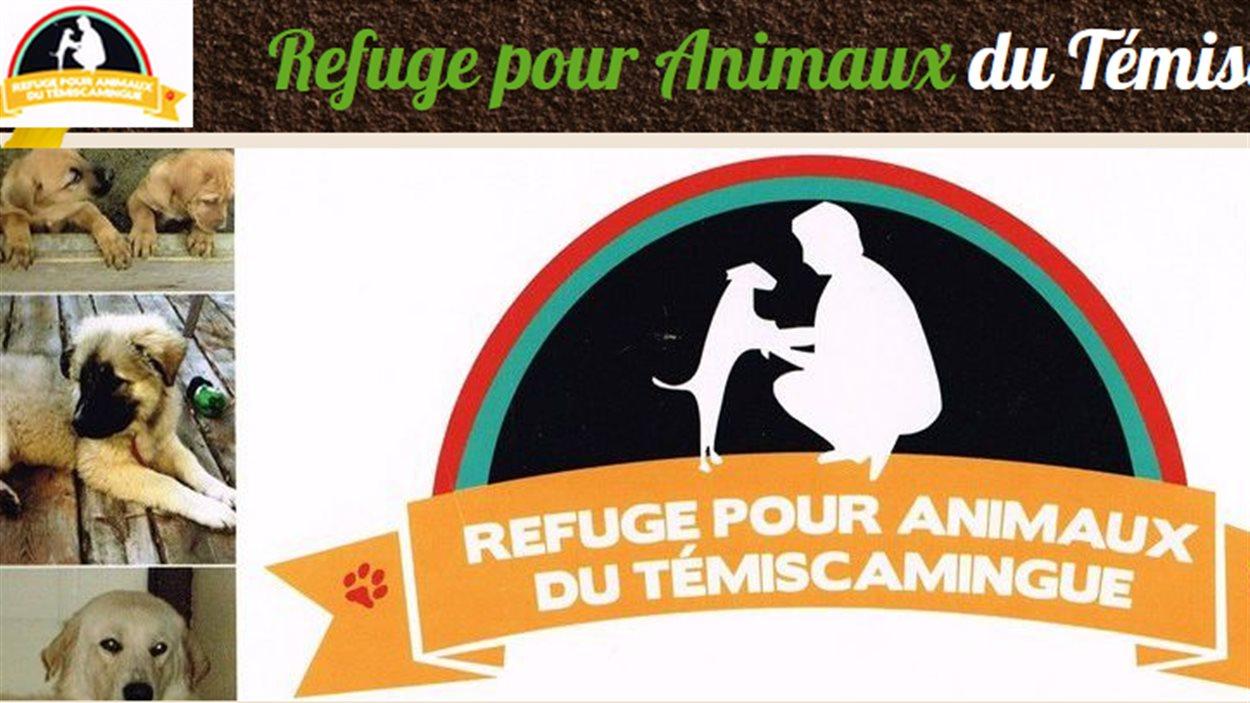 Capture d'écran du site Internet Refuge pour animaux du Témiscamingue