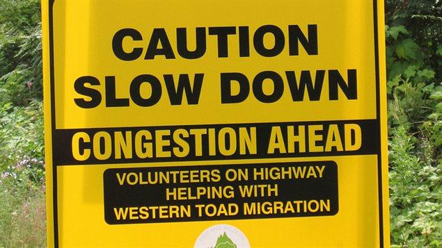 Photo d'un panneau de mise en garde pour les conducteurs qui traversent l'habitat des crapauds.