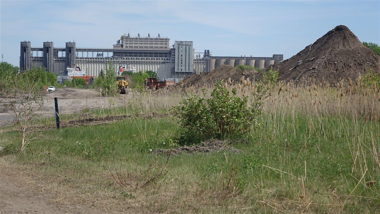 Un homme d'affaires souhaite développer un projet d'envergure de circulation de marchandises sur ce terrain dans Mercier–Hochelaga-Maisonneuve.