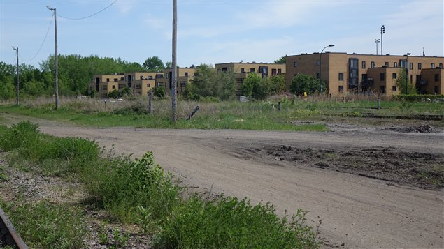 Des immeubles à logements à côté du nouveau terrain de Charles Raymond dans Mercier–Hochelaga-Maisonneuve.