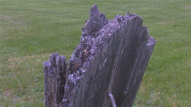 Certaines pierres tombales sont en mauvais état.