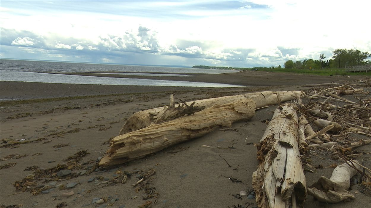La plage de Carleton-sur-Mer