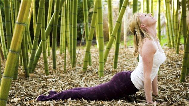 Les vêtements qu'on croyait écologiques ne contiennent souvent que 15 % de fibre de bambou.