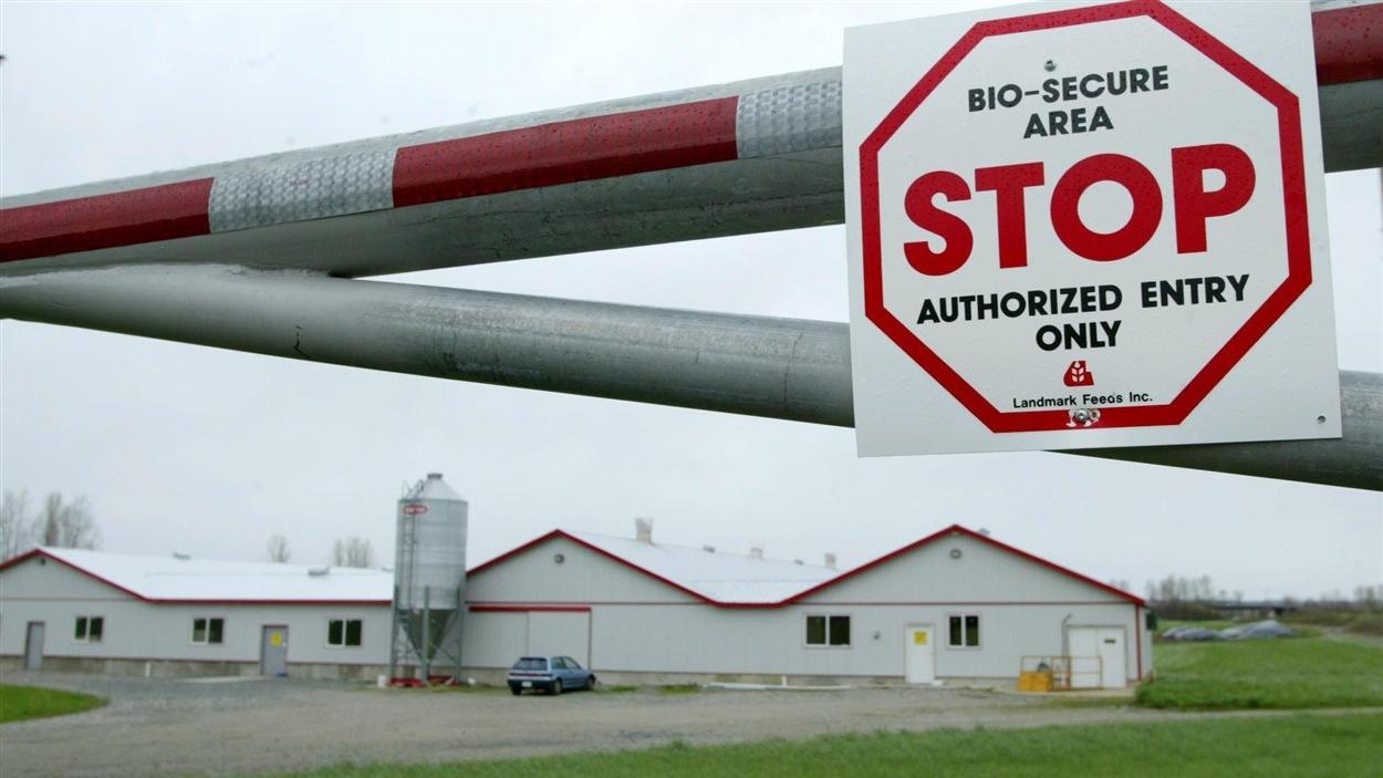 L'agence canadienne d'inspection des aliments a mis en quarantaine tous les lieux situés dans un rayon de trois kilomètres autour de la ferme.