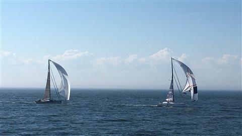 Deux monocoques de la Transat Québec Saint-Malo, au large de Rimouski en début d'après-midi