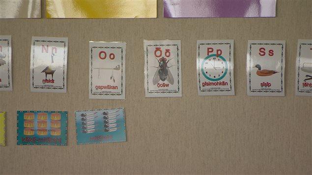 Affiches avec des images et des mots écrits en langue crie sur un mur
