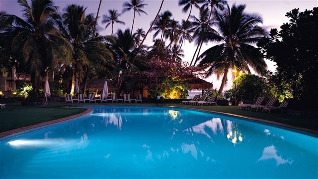 Une piscine entourée de palmiers