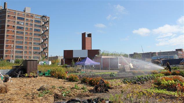 À l'angle de l'avenue Atlantic et de la rue Durocher, le Catalyseur d'Imaginaires Urbains, un lieu pour mettre en valeur le site le temps des travaux sur l'immense terrain du futur campus d'Outremont de l'Université de Montréal.