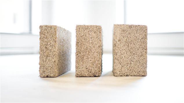 Des blocs de béton de chanvre