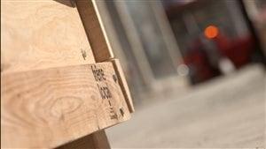 Du mobilier urbain est fabriqué avec d'anciens frênes du quartier.