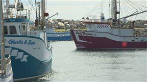 Bateaux de pêche à Terre-Neuve