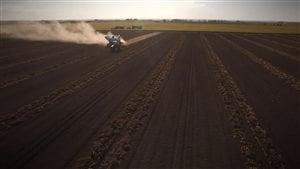 De plus en plus d'entreprises financières achètent des terres agricoles.