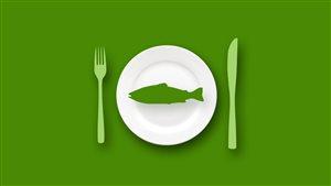 Capsule chiffrée sur la provenance du saumon que nous consommons.