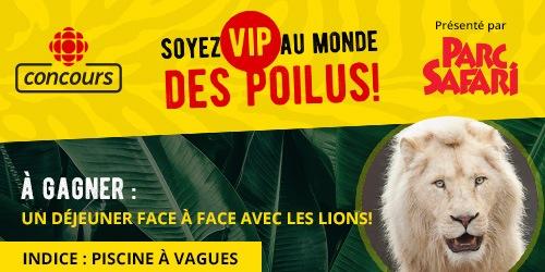Concours Soyez VIP au monde des Poilus - À gagner un déjeuner face à face avec les lions : Indice : Piscine à vagues